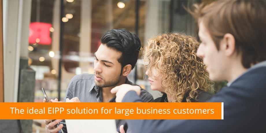 Globally applicable EIPP and eInvoicing solutions with flexible output format