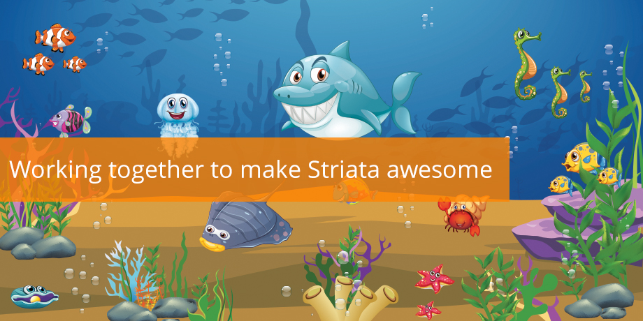 Working Together To Make Striata Awesome